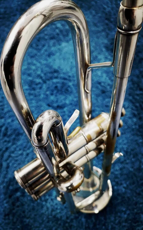 Andi Brassvegas Trompete